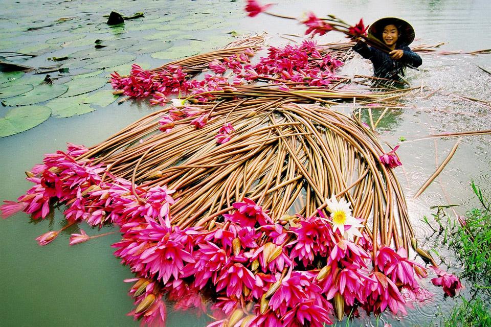 Du Lịch Miền Tây Có Gì Hấp Dẫn - Tổng Hợp Vietmountain Travel 2