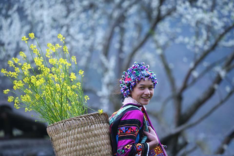 Du lịch Hà Giang mùa xuân có gì hấp dẫn? - Vietmountain Travel 1