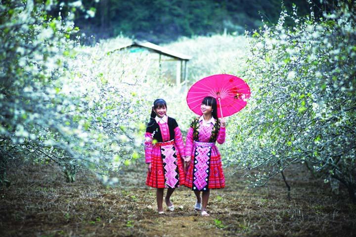 Du lịch Hà Giang mùa xuân có gì hấp dẫn? - Vietmountain Travel 2