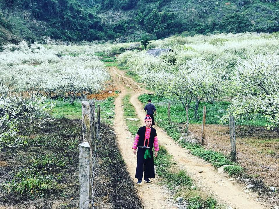 Tết âm lịch 2019 nên đi du lịch ở đâu miền Bắc - Vietmountain Travel 9