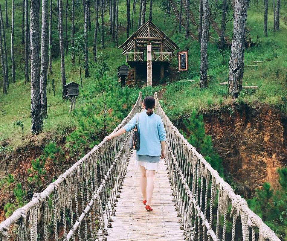 Kinh nghiệm đi du lịch Đà Lạt tự túc đầy đủ từ A-Z - Tổng Hợp Vietmountain Travel 6