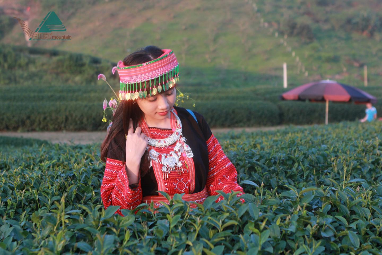 Mộc Châu Mùa Hoa Cải Trắng, Tà Xùa Mây Bồng Bềnh 3