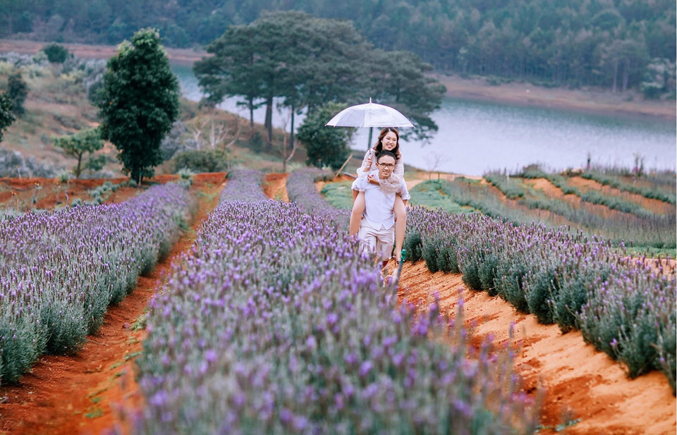 Bật mí địa điểm check-in Đà Lạt SIÊU NGỌT dành riêng cho các cặp đôi - Vietmountain Travel 4