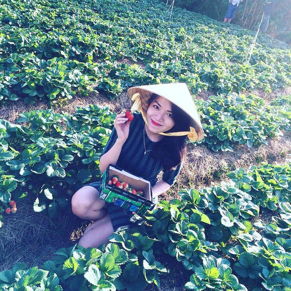 Bật mí địa điểm check-in Đà Lạt SIÊU NGỌT dành riêng cho các cặp đôi - Vietmountain Travel 6