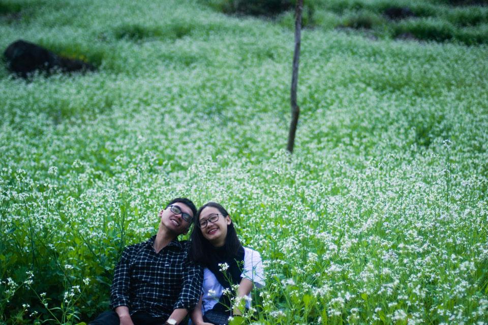 Mãn nhãn với cánh đồng hoa cải Bản Lùn nở trắng trời Mộc Châu - Vietmountain Travel 3