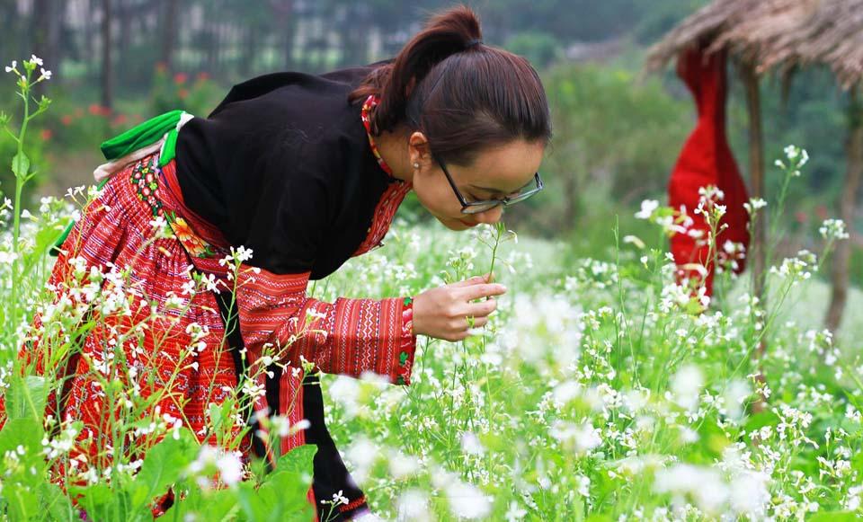 Mãn nhãn với cánh đồng hoa cải Bản Lùn nở trắng trời Mộc Châu - Vietmountain Travel 8