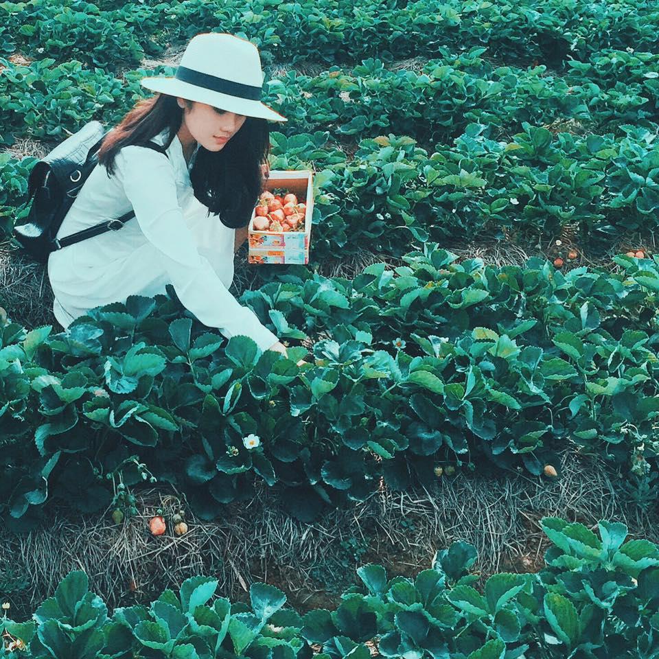 SĂN LÙNG địa điểm du lịch ở Mai Châu HOT nhất - Vietmountain Travel 1