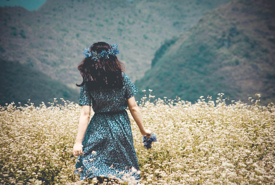 Hà Giang Tháng 10 - Chiêm Ngưỡng Vẻ Đẹp Như Trong Tranh 1