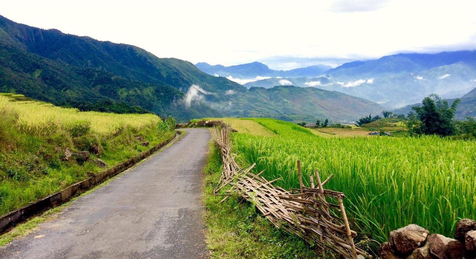 tour-mu-cang-chai-ngoc-chien-sapa-mua-nuoc-do-vietmountain-travel3