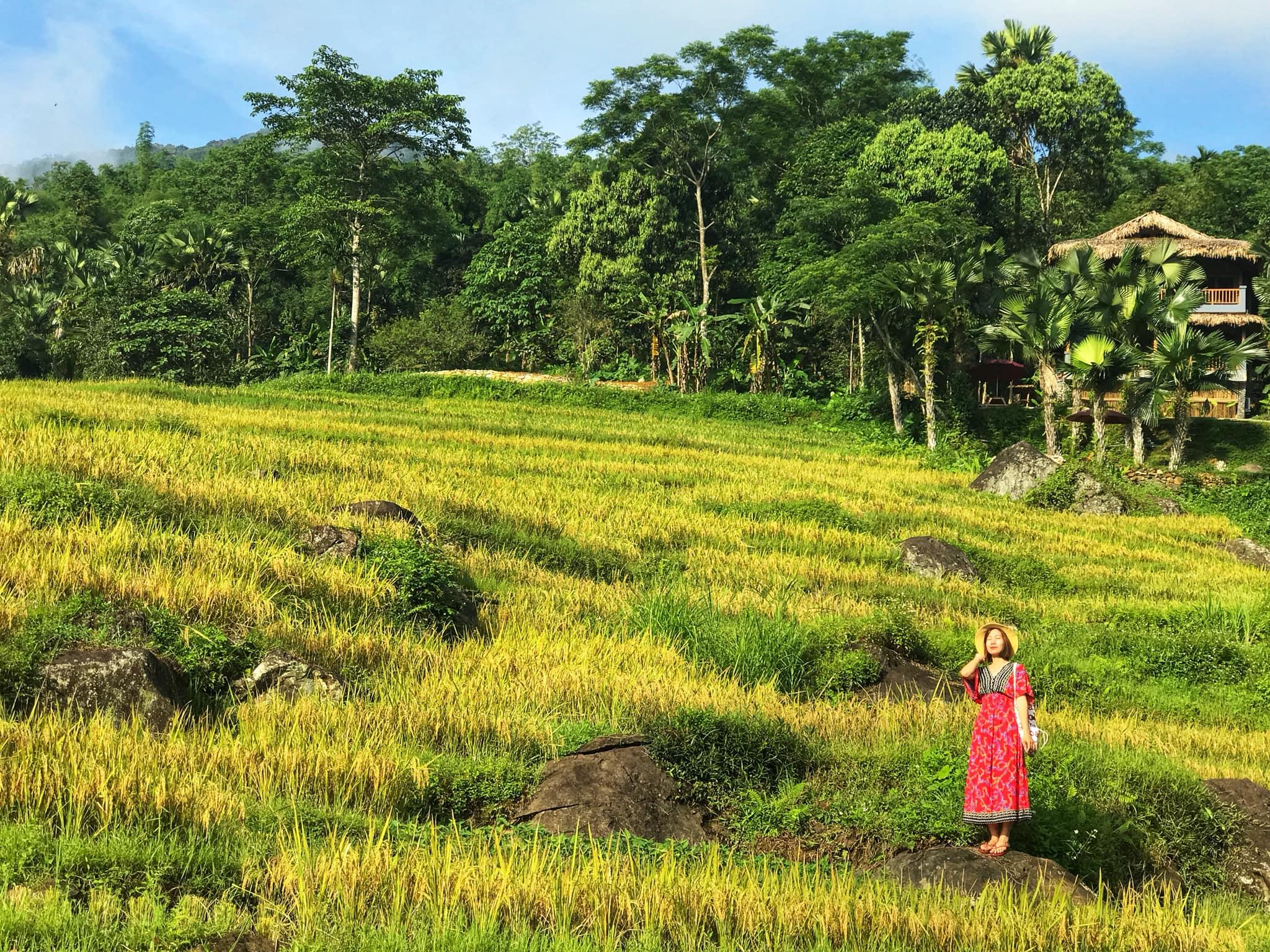 Chiem-nguong-pu-luong-mua-lua-chin-tour-pu-luong-vietmountain-travel3