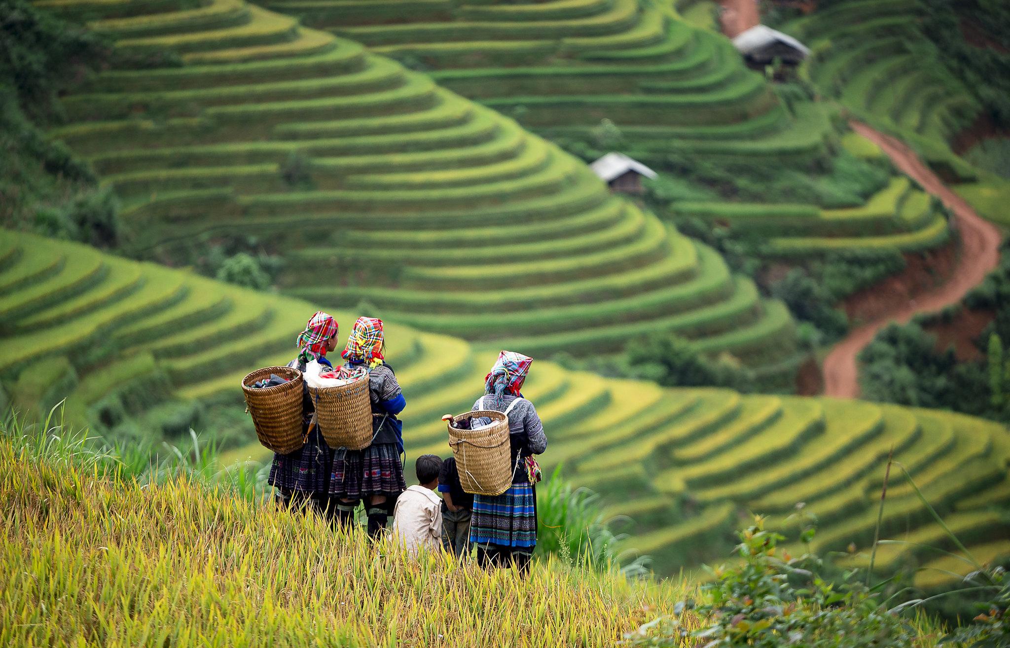 Cong-ty-du-lich-chuyen-tour-tay-bac-vietmountain-travel121 (1)