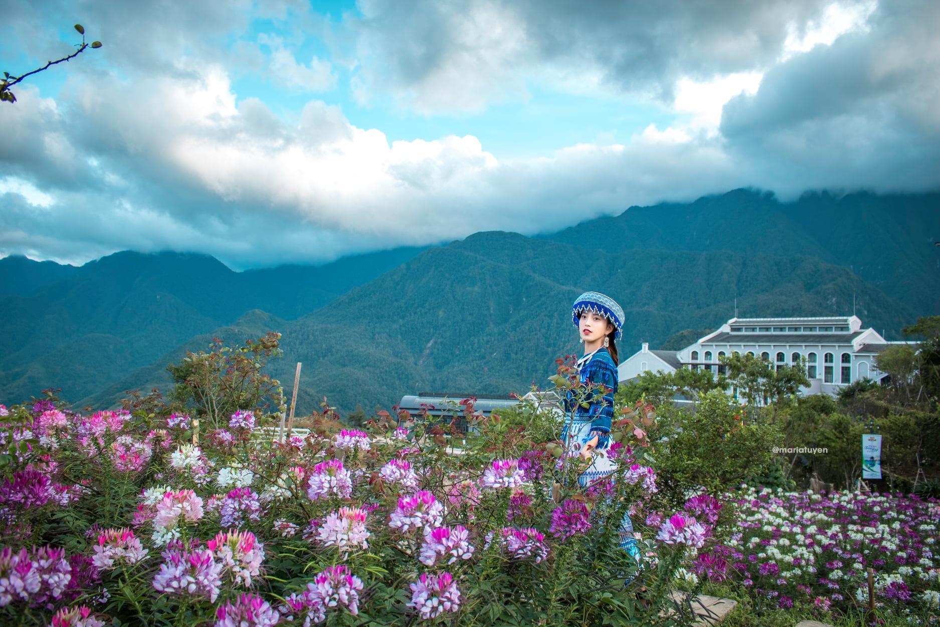 Top-3-diem-du-lich-nui-hot-nhat-trong-dip-tet-nguyen-dan-2020-vietmountain-travel4 (1)