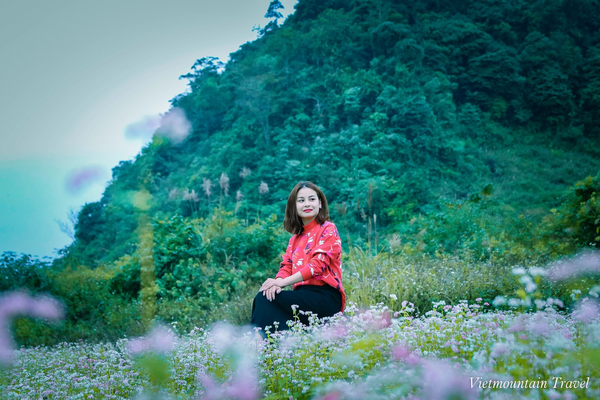 Thoi-gian-ly-tuong-de-len-ha-giang-ngam-hoa-tam-giac-mach-du-lich-nui-viet-vietmountain-travel2