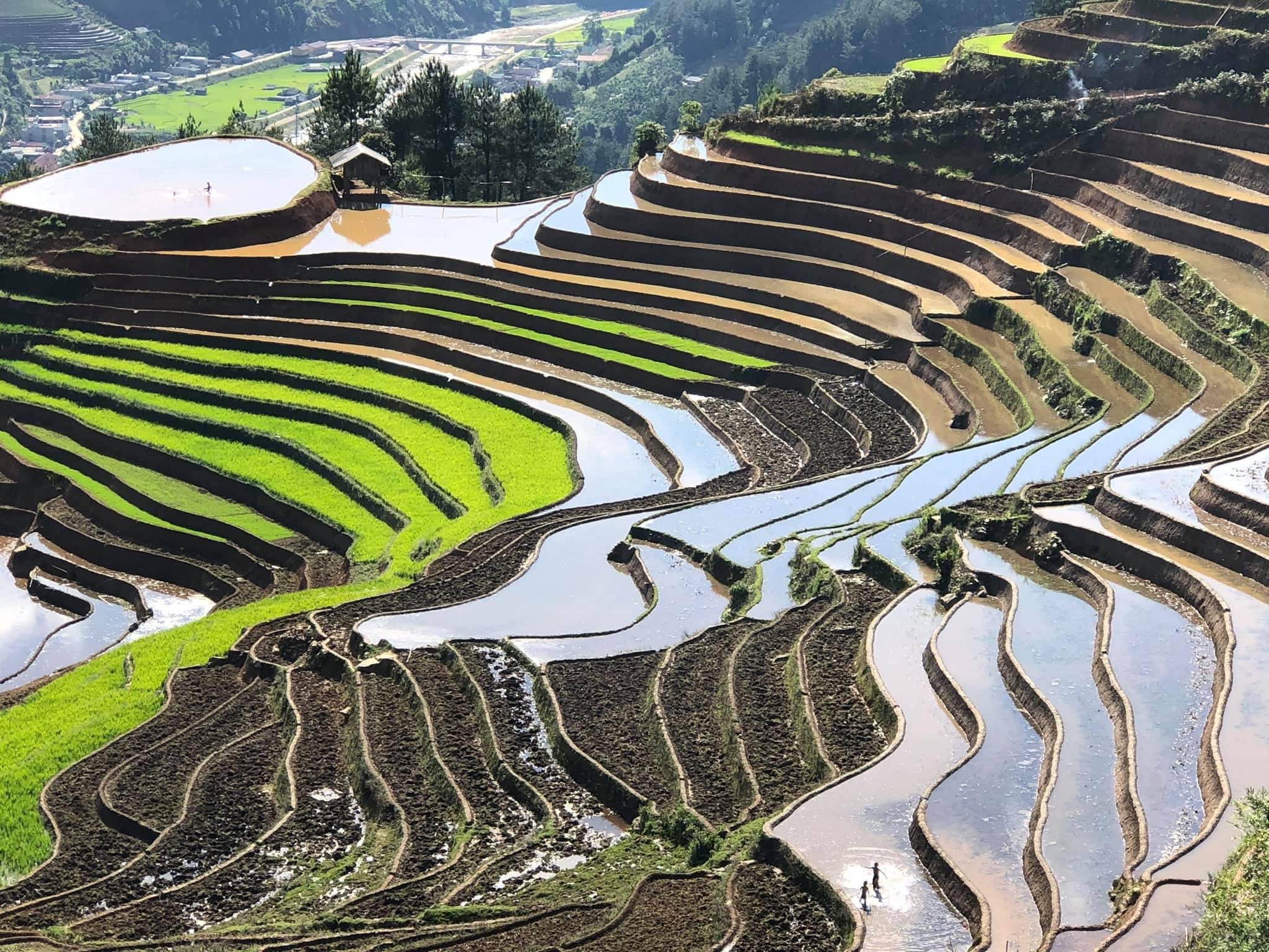 Mu-cang-chai-du-lich-mua-nuoc-do-nam-2020-duoc-to-chuc-vao-30-thang-5-vietmountain-travel5