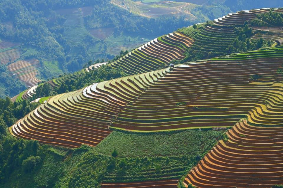 Xu-mu-lung-linh-trong-nhung-ngay-nuoc-do-vietmountain-travel6