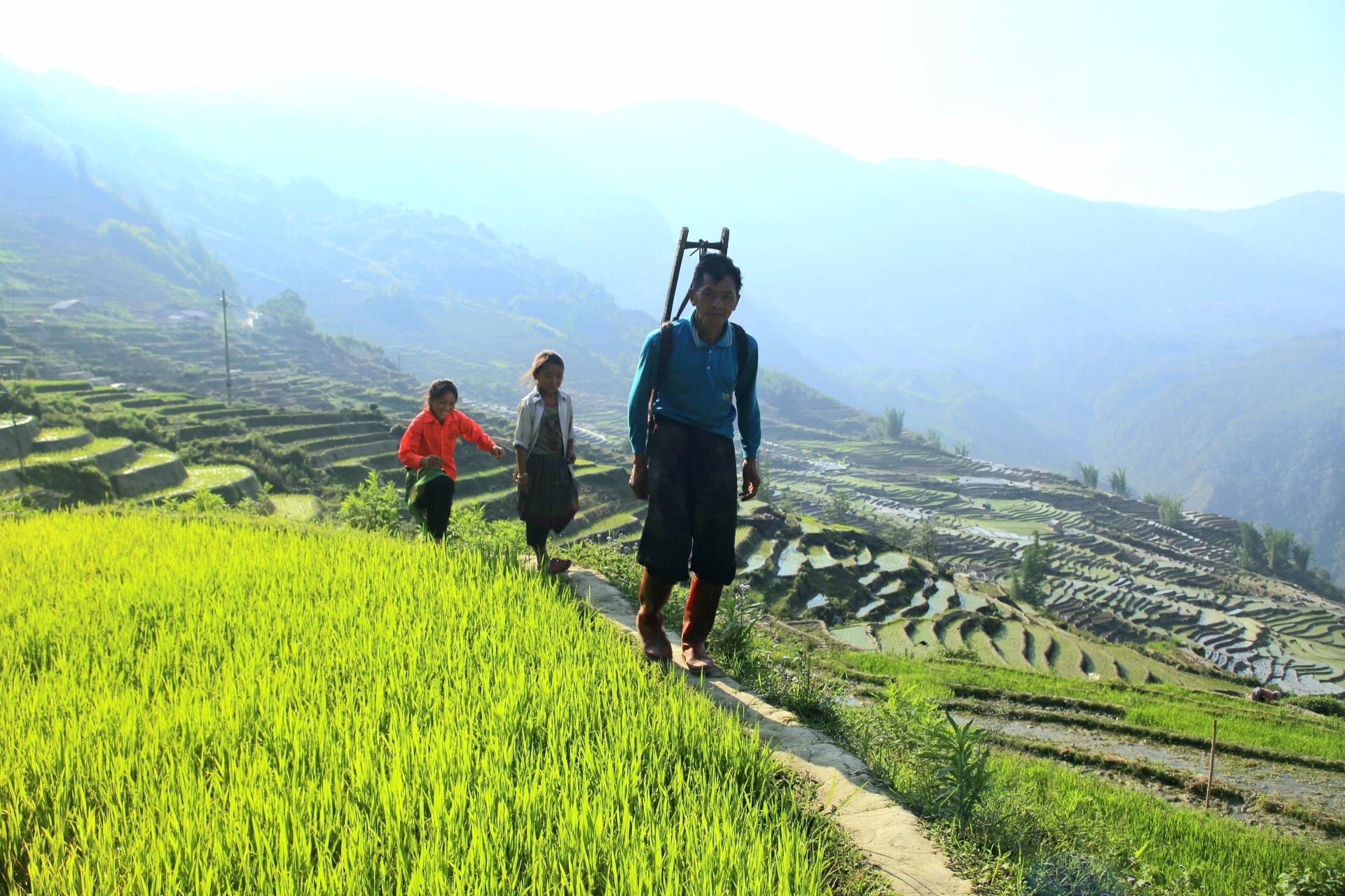 Mu-cang-chai-sapa-mua-nuoc-do-diem-den-an-toan-sau-mua-dich-covid19-vietmountain-travel5