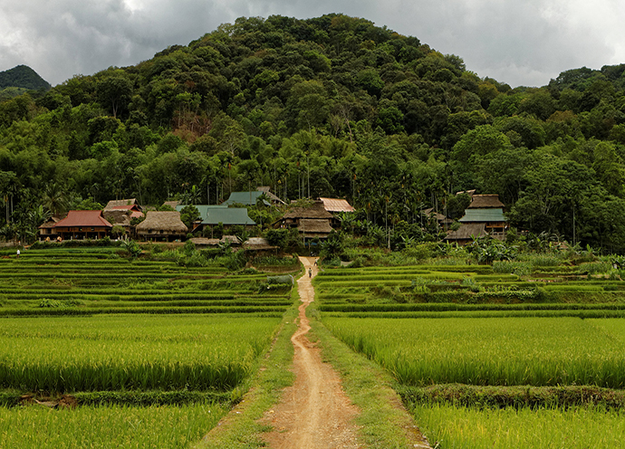 tour-pu-luong-mua-lua-chin-vietmountain-travel3